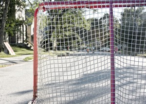 Road Hockey Net