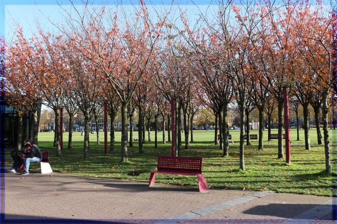 Vondelpark in Amsterdam Netherlands